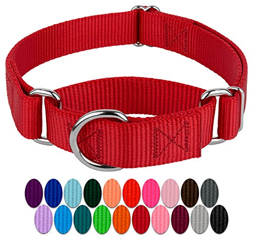 Country Brook Petz - Red Martingale Heavy Duty...