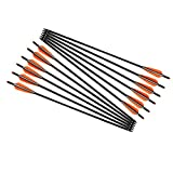 Archery 18inch Hunting Archery Carbon Arrow Crossbow Bolts with 4' vanes Feather and Replaced Arrowhead/Tip(Pack of 12