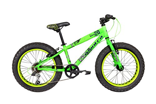 Montra Bigboy 20 20T 6 Speed Super Premium Cycle(Green)