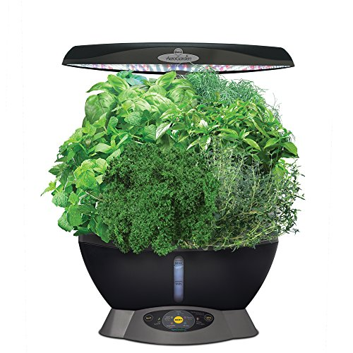 AeroGarden Classic 6 with Gourmet Herb Seed Pod Kit