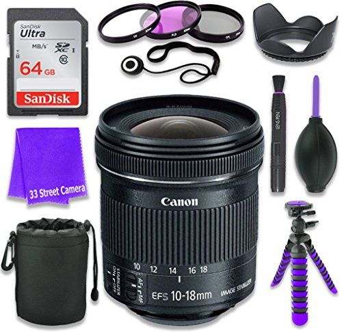 Canon EF-S 10-18mm f/4.5-5.6 is STM Lens for Canon DSLR Cameras & SanDisk 64GB Class 10 Memory Card + Complete Accessory Kit (11 Items)