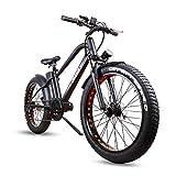 NAKTO Fat Tire Electric...