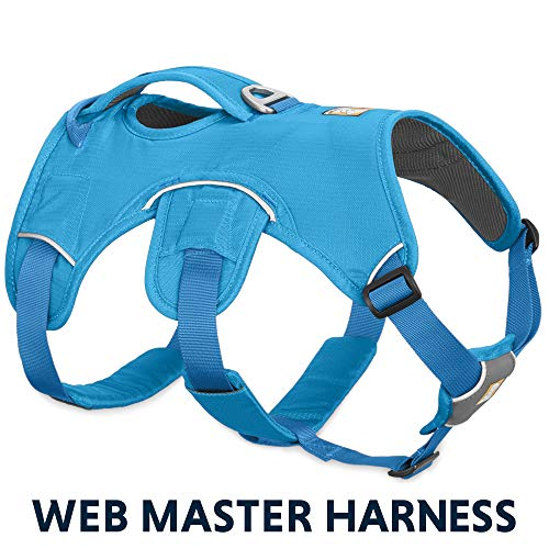 RUFFWEAR - Web Master, Multi-Use Support Dog Harness, Hiking and Trail Running, Service and Working, Everyday Wear, Blue Dusk, X-Small