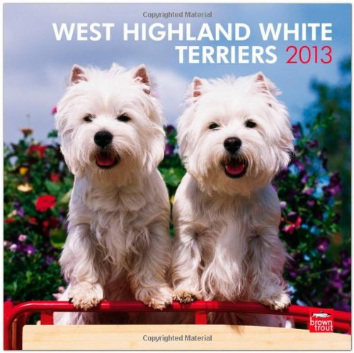 West Highland White Terrie Wall Cal 2013