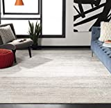 Safavieh Adirondack Collection ADR113B Modern Ombre Area Rug, 9' x 12', Ivory/Silver