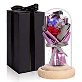 HOHO TIME Rose Enchantée, Rose Enchantée sous Cloche, Rose éternelle en dôme de Verre, Rose Cadeau pour Anniversaire, Saint Valentin, Fête des mères et...