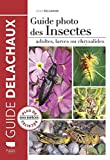 Guide photo des insectes - Adultes, larves ou chrysalides