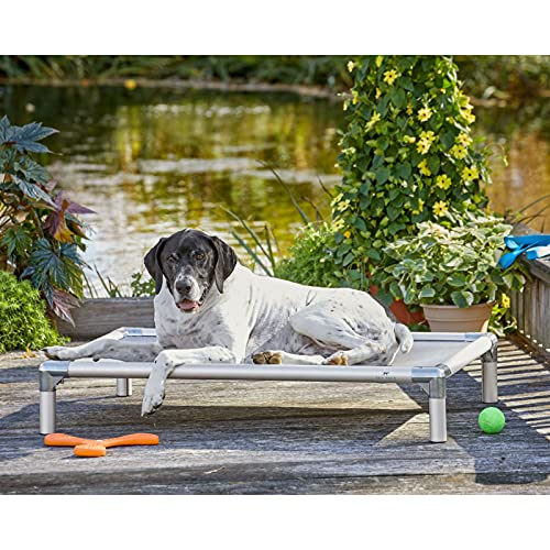 Orvis Raised Cooling Dog Bed