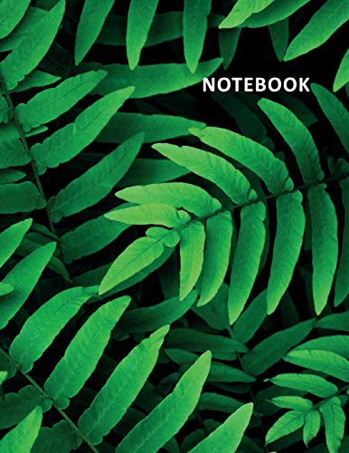 College Ruled Notebook: Indoor ferns Excellent Student Composition Book Daily Journal Diary Notepad perfects gifts for avid gardeners