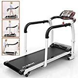 XWDQ Walking Jogging Fitness Exercise Treadmill Cardio Electric Running Machine Treadmill for Senior Elders W/Extra-Long Handles,12811560CM