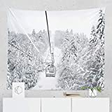 Winter Skiing Tapestry Wall Hanging Mountain Ski Snowy Lift Tapestries Dorm Room Bedroom Decor Art - Printed in the USA - Small to Giant Sizes