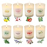 YINUO LIGHT Scented Candles 2.5 Oz Glass Soy Candles Gifts for Women, 8 Pack