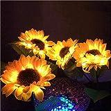 N/V Outdoor Sunflower...image