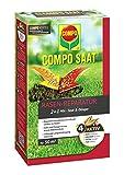 Compo Saat kit de réparation du gazon comprenant des graines et de l'engrais, gazon...