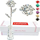 LovFaith Silver Dipped Real Rose, Best 25th Anniversary Silver Gift for Wife Mom Her, with High-end Crystal Stand