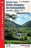 Sentier vers Saint-Jacques-de-Compostelle via Arles (Toulouse, Jaca, Lourdes): Plus de 20...