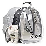 Sac à dos extensible pour chat, sac à dos pour petit chien, randonnée,...