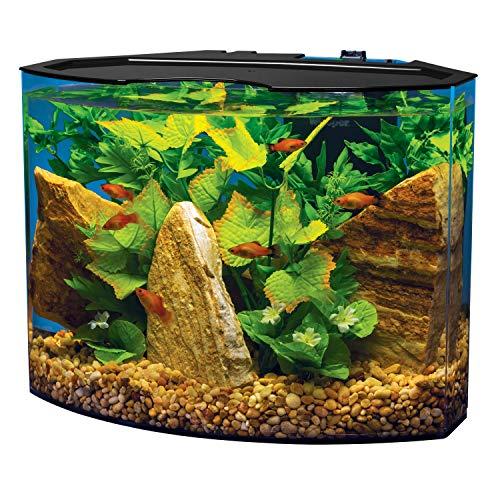 Tetra Crescent aquarium Kit 5 Gallons, Curved-Front Tank