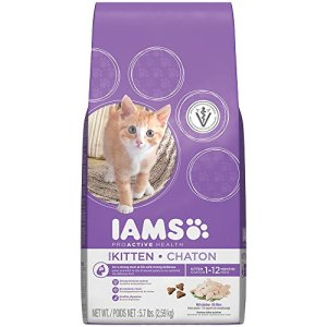 IAMS PROACTIVE HEALTH Kitten (1 Year Old and Younger) Chicken Recipe Dry Cat Food 5.7 Pounds