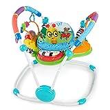 Baby Einstein 60184 Neighborhood Friends Special Edition - Saltador Musical de Actividades para Niños Mayaores de 6 Meses y un Peso de Hasta 11.34 kg (25 lb), Unisex, Multicolor, 30.5' x 33' x 29