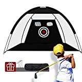 Sinolodo Golf Hitting Net with 2 Chipping Holes for Junior Golf Practice, Golf Chipping Net for Backyard Driving with 4 Stake Pegs, Golf Practice Net for Indoor and Outdoor