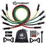 FitBeast Bandes de Résistance d'exercice, Kit de Bandes D'étirement avec...