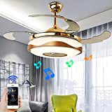 RuiWing 42' Smart Bluetooth Music Player Ceiling Fans with LED Colorful Light Retractable Blades Chandelier and Remote Control with Silent Motor Ceiling Lamp for Kids Room Living Bedroom
