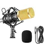 Neewer Kit de Micrófono Condensador Profesional para Radiodifusión y Grabación Estudio-...