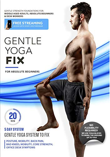 Gentle Yoga Fix - Simple Strength Foundations For Older Adults To Fix Posture, Desk Related Pain, Back Aches, Energy Levels, Core Strength, and Stress | Complete 5 Day System, 20 Min or Less Per Day
