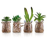Mini Plantes Artificielles (Lot de 4) - Petites Fausses Plantes Succulentes avec Vase...