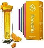 Hydracy Bouteille à Infusion de Fruits avec Etui Isotherme Anti-Condensation et Long Infuseur -...