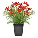 luxsego Artificial Coreopsis Flowers with Pot, 16.7 Inch Outdoor UV Resistant Plants, Artificial Fake Silk Flowers for House Decorations, Bathroom, Wedding, Garden, Office, Indoor and Outdoor (Red)