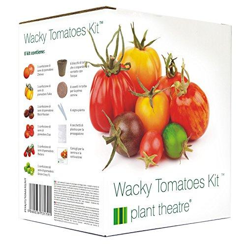 Plant Theatre Kit di pomodori stravaganti con diverse varietà da coltivare