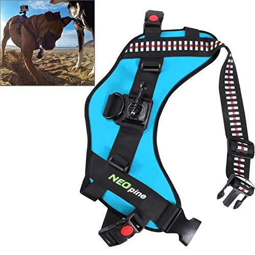 GHFPCASE Cintura for Cinture Regolabile for Cani con Cinturino Regolabile for Cani GoPro Hero 4/3+ / 3/2/1 (Nero) (Colore : Blue)