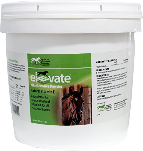 Horse | Kentucky Performance Products Elevate Maintenance Powder, 10 Pounds, Vitamin E Horse Supplement, Gym exercise ab workouts - shap2.com