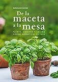 De La Maceta A La Mesa: Planta, cosecha y cocina hierbas...