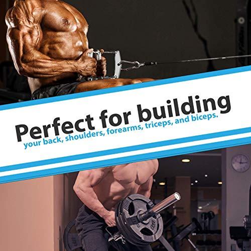 5185sqljZML - Home Fitness Guru