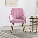Artechworks Velvet Modern Living Dining Room Arm Chair Club Leisure Guest Lounge Bedroom Upholstered Chair with Gold Metal Legs, Pink with A Litter Purple