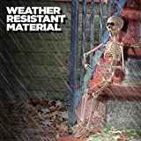 Prextex 20 Inch Posable Halloween Skeleton- Full Body Halloween Skeleton with Movable/Posable Joints for Best Halloween Decoration