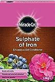 Miracle-Gro - sulfate de fer éricacées Soil Conditioner - 1,5 kg