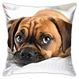 SXboxing Decorative Throw Pillow Covers 18x18 Inches,Christmas Square Throw Pillow Cases for Sofa Bedroom Car Cute Puggle Dog Puppy Puppies Beagle Pug