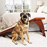 PetSafe CozyUp Bed Ramp for Dogs and Cats - Durable Frame Supports up to 120lb - Furniture Grade Wood Pet Ramp with Cherry Finish - High-Traction Carpet Surface, Great for Older Animals