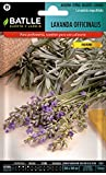 Semillas Aromticas - Lavanda officinalis - Batlle