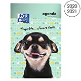 OXFORD Funny Pets Agenda Scolaire Août 2020 - Sept 2021 Journalier 352 Pages...