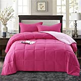 HIG 2pc Down Alternative Comforter Set - All Season Reversible Comforter with Sham - Quilted Duvet Insert with Corner Tabs -Box Stitched – Hypoallergenic, Soft, Fluffy(Twin/Twin XL, Pink)