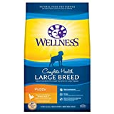 Wellness Complete Health Natural Dry Large Breed Puppy Food, Chicken, Salmon &...