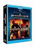 Benjamin Gates et le trésor des templiers + Benjamin Gates et le livre des secrets - Coffret 2 Blu-Ray [Blu-ray]