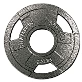 Champion Olympic Grip Plate, 2.5 lbs