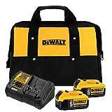 DEWALT 20V MAX Battery Starter Kit...