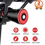 EBUYFIRE Smart Bike Tail Light, Auto On/Off Flashing Red Back LED Cycling Safety Warning Taillight, Easy Mount USB Rechargeable Ultra Bright Sensing Bicycle Rear Light Fits Any Road Bikes